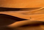 golden-sands